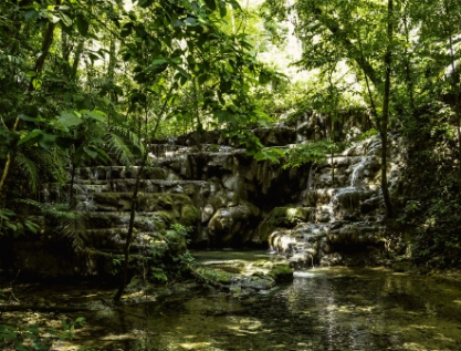 Crean Atlas de Megaproyectos en zonas indígenas y negras de América Latina