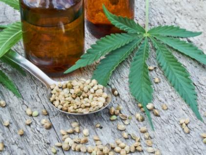 Urgen reglamentación de uso de cannabidol; Congreso descarta aval en periodo ordinario