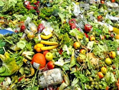 Se desperdician 34.7 por ciento de alimentos, son 2.5 del PIB