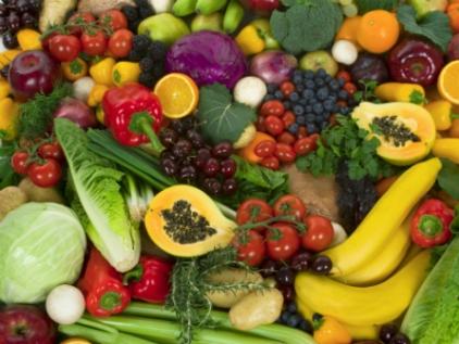 Sugieren a diputados diversificar exportaciones agroalimentarias a Rusia