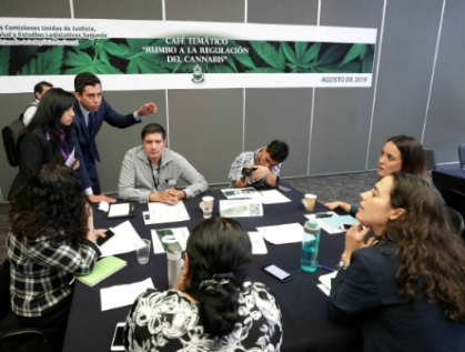 Alistan dictamen sobre la regulación del cannabis para mediados de septiembre