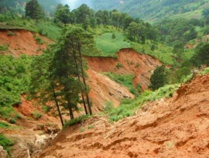 Vinculan erosión de suelos y carencia alimentaria en México