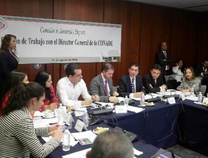 Reitera Castillo ante Senadores argumentos por resultados en Juegos Olímpicos