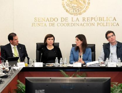 Polemiza Senado por nombramiento de Paloma Merodio como vicepresidenta del INEGI