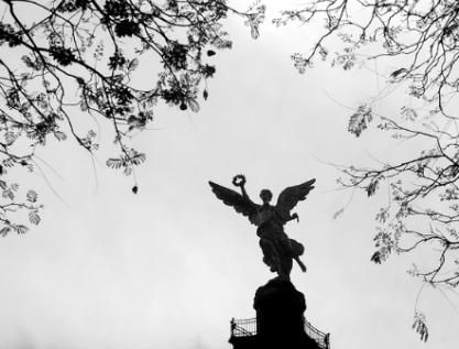 Esboza Senado impugnaciones a la Constitución Política de CDMX