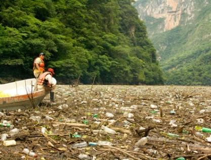 Regresiva, nueva ley ambiental