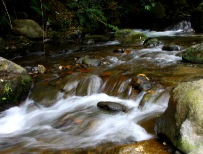 Senadores exponen su rechazo a privatizar el agua en el país