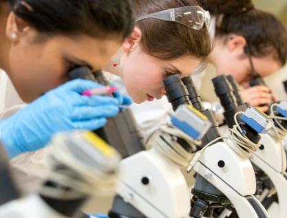 Ciencia e innovación, desarrolladas en contextos de incertidumbre en América