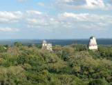 Generará Tren Maya impacto ambiental: Semarnat