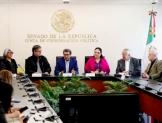 Consulta Marcelo Ebrard al Senado sobre eventuales cambios al T-MEC