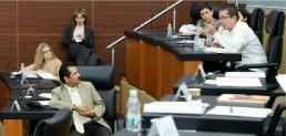 Reporte Legislativo: Cámara de Senadores, jueves 11 de abril de 2013