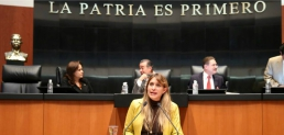 Reporte Legislativo, Cámara de Senadores: Martes 3 de diciembre de 2013