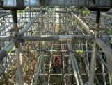 Economía retorna al crecimiento: Banxico