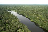 Avanza ley contra el cambio climático: Reporte Legislativo
