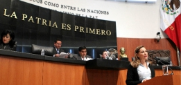 Reporte Legislativo, Cámara de Senadores: Jueves 6 de noviembre