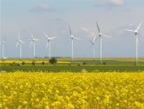 México aspira en 2025 a generar 35% en energías renovables