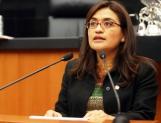 Urgen a Senado analice minuta que expide Ley del Derecho a la Alimentación Adecuada