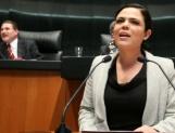 Gómez del Campo, vicecoordinadora del PAN en senado
