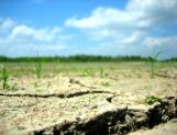 Cambio climático, amenaza para la humanidad