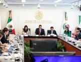 Presidenta del Comité de Participación Ciudadana sostiene que Fiscal Anticorrupción debe tener reputación intachable