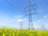 Horario de verano permite ahorrar 1% de electricidad anual: UNAM