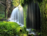 El equilibrio entre ambiente, economía y sociedad es posible con una administración sustentable