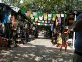 La economía social y solidaria debe impulsarse como proyecto de nación en México