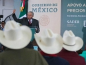 Establece gobierno federal precios de garantía para Maíz, Frijol, Arroz, Trigo