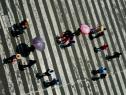 Inicia Ley General de Seguridad Vial su ruta en el Congreso