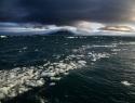 Consideran sexta extinción masiva de especies como el mayor desafío ambiental del planeta