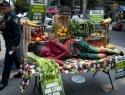 Latinoamérica, una de las más peligrosas para activistas ambientales
