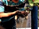 """""""La corrupción propicia deterioro del agua en México"""""""