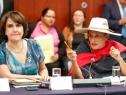 Se declaran en sesión permanente las comisiones que analizan la regulación del cannabis