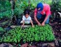 La agricultura familiar, vía hacia la soberanía alimentaria