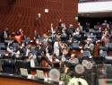 Avanza aprobación a uso lúdico del cannabis: Pasa del Senado a Diputados