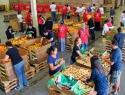 Apoyan en Sociedad Civil recuperación de alimentos para zonas marginadas