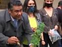 Siembran diputados cannabis para recordar legislar sobre ella