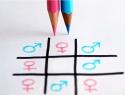 Ningún municipio tiene reglamentos de igualdad de género