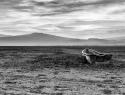 Sequía, un fenómeno con poco impacto en las políticas públicas