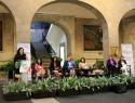 Senadoras urgen a armonizar la ley para lograr la igualdad de género