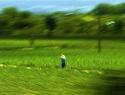 Mujeres rurales, sector con mayor rezago social; tres millones padecen pobreza